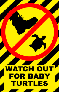 Watch out for baby turtles - warning attention alert sign