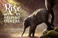 We Rise By Helping Others Poster Plakkaat template