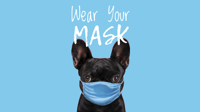 Wear Your Mask Pug Dog Slide Digitale Vertoning (16:9) template