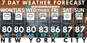 Weather Forecast New York Twitter 帖子 template