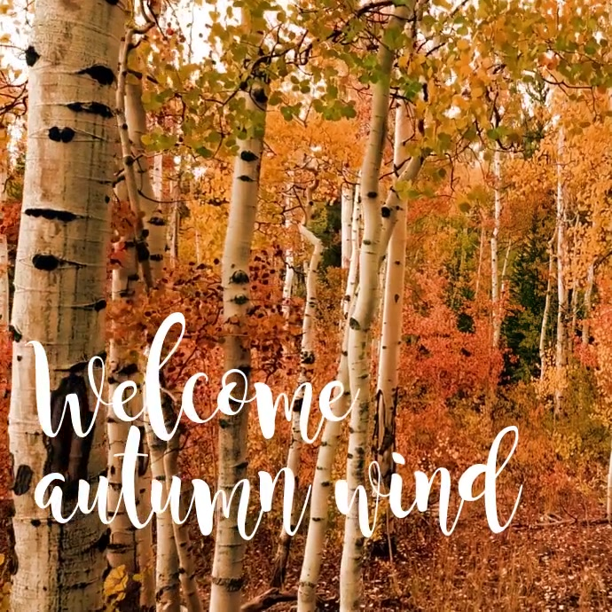Wecome autumn Wind