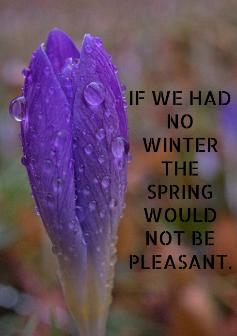 WINTER AND SPRING QUOTE TEMPLATE A2