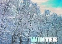 winter Carte postale template