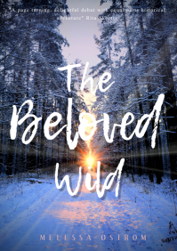 Winter Romantic Novel Kindle Cover Template