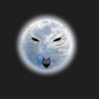 Wolf Logo, Wolf night moon Логотип template
