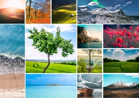 Wonderful Nature Collage Kartu Pos template