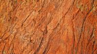 Wood texture Digitalanzeige (16:9) template