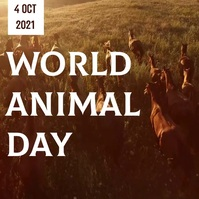 World Animal Day Video Template Quadrato (1:1)