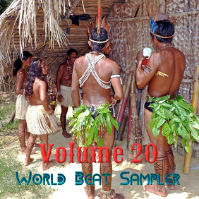 World Beat Sampler Vol. 20