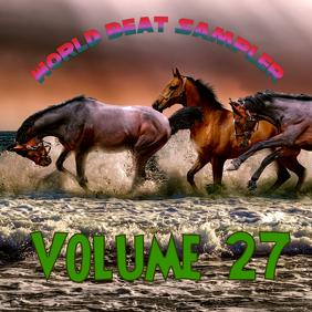 World Beat Sampler Volume 27