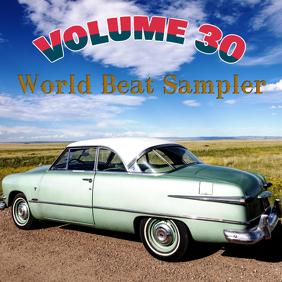 World Beat Sampler Volume 30