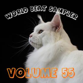 World Beat Sampler Volume 55