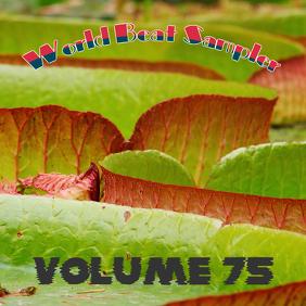 World Beat Sampler Volume 75