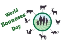 World zoonoses day Kartu Pos template