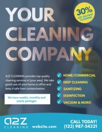 Your Cleaning Company Video Flyer Ad