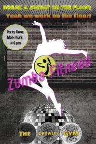 Zumba Fitness Class/ Gym/ Dance
